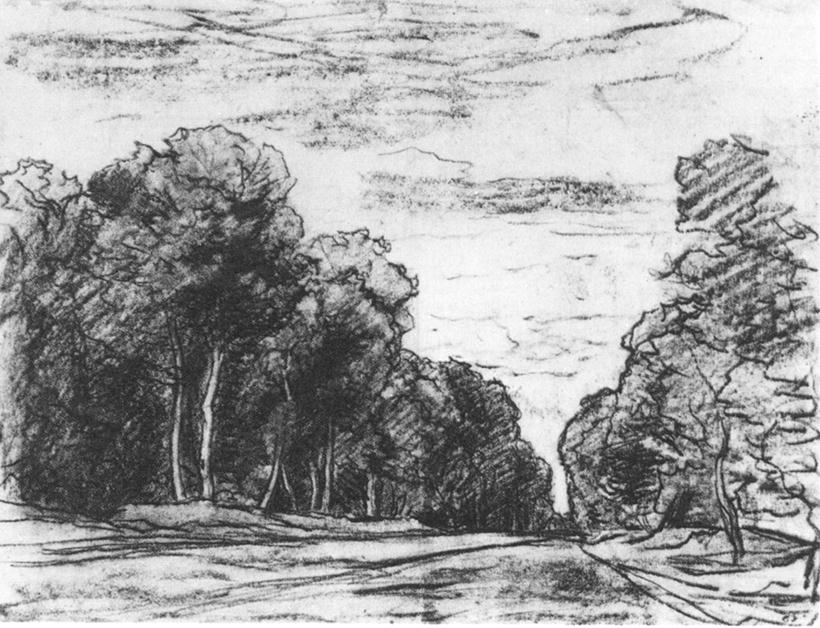 Sketches Pictures of a Forest Forest 1877 Sketch
